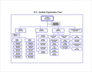 Printable Ics Organizational Chart